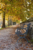 Bench fall — Stock Photo