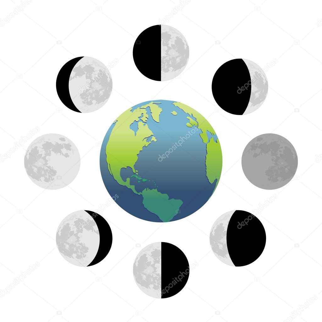 Fases da lua — Vetor de Stock © SlavicaPopovska #7274947