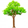 Cartoon green tree isolated on white. — Stock Vector #7866401