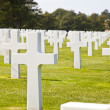 View at American Cemetery in Normandy, France — Stock Photo