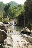 Berg creek val — Stockfoto