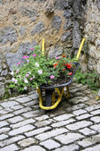 Decorative wheelbarrow — Stock fotografie