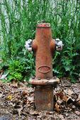 старый hidrant — Стоковое фото