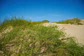 Sand dunes in Anapa, Russia — Stock Photo
