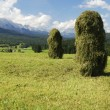 Haystacks — Stock Photo