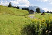 Idyllic mountains — Stock Photo