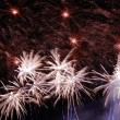 Fireworks display — Stock Photo #7909764