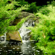Stream with stones in green park - Stock Photo