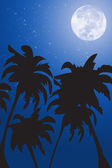 Vector palm trees against the night sky — Stock Photo