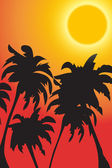 Vector palm trees against a rising sun — Stock Photo