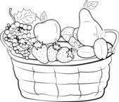 Fruit basket — Stock Vector
