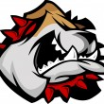 Mascot Bulldog with Collar Vector Illustration — Stock Vector