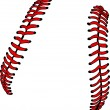 Baseball Laces or Softball Laces Vector Image - 