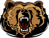 Grizzly Bear Mascot Head Vector Graphic — Stock Vector