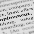 Dictionary Series - Employment — Stock Photo