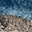 Royalty-Free Stock Photo: Wild sea and rocks