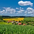 Beautiful green village scenery landscape in spring time III — Stock Photo