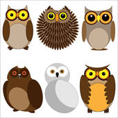 Set of different owls — Stock Vector