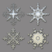 Delicate snowflake collection — Stock Photo