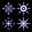 Delicate metalic snowflake collection — Stock Photo
