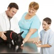 Family at the Vet — Stock Photo #6778069