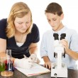 Stock Photo: Young Scientists in Lab