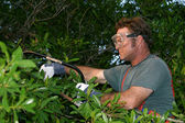 Tree Trimmer With Saw — Stock Photo