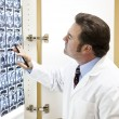 Doctor Examines Cat Scan — Stock Photo