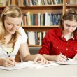 Studying in the Library — Stock Photo