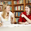 Homework Success — Stock Photo