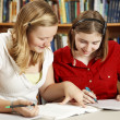 Teens Do Homework in Library — Stok fotoğraf