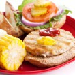 Delicious Healthy Turkey Burger - 图库照片