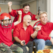 Football Fans - Touch Down — Stock Photo