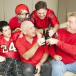 Royalty-Free Stock Photo: Football Fans Toast Success