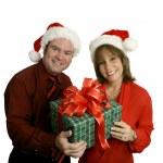 Vánoční pár — Stock fotografie