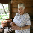 In The Potting Shed - Stockfoto