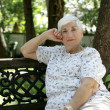 Senior Lady Relaxing in Park — Stock Photo