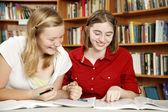 Teen Girls - Hausaufgaben Spaß — Stockfoto