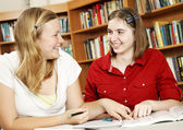 Teens Study Together — Stock Photo