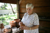 In The Potting Shed — Stock Photo