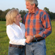 Country Couple Romantic — Stockfoto