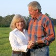 Handsome Farm Couple — Stock Photo