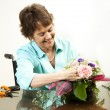 Arranging Flowers — Stock Photo