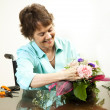 Stock Photo: Arranging Flowers