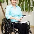 Stock Photo: Web Surfing in Wheelchair
