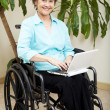 Web Surfing in Wheelchair — Stock Photo