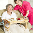 Stockfoto: Senior Home Meal Delivery