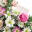 Flower Border Horizontal — Stockfoto