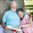 Beautiful Senior Couple Reading — Stock Photo
