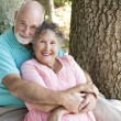 Loving Seniors Embrace — Stock fotografie